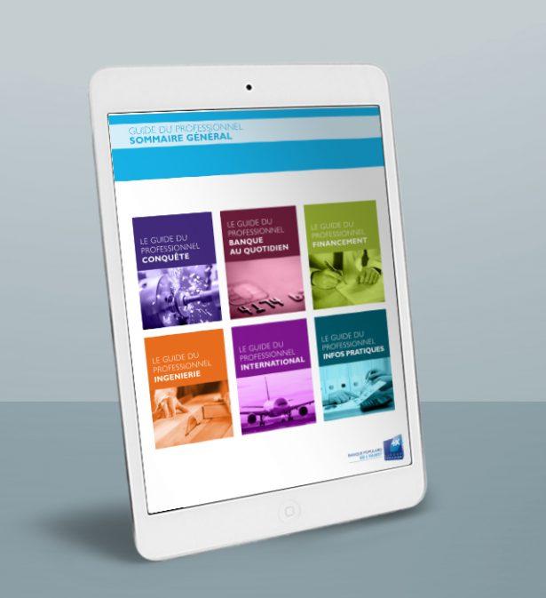 ebook – livre numérique